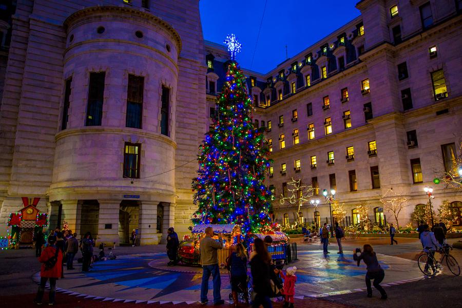 christmas tree at city hall