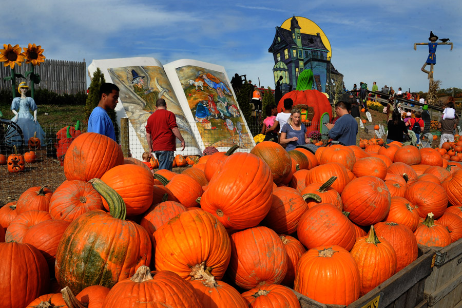 Pumpkinland at Linvilla Orchards