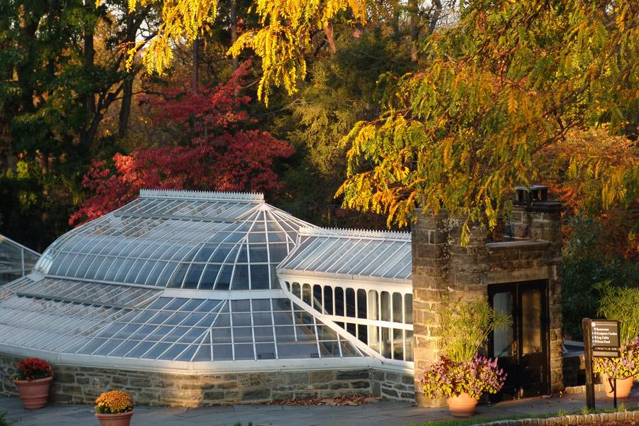 Morris Arboretum's Fall Festival
