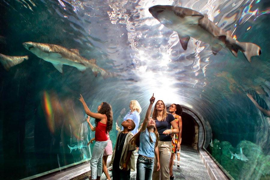 Top 50 MustSee Attractions In Philadelphia Visit Philadelphia – New Jersey Tourist Attractions Map