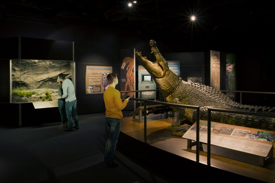 the Crocs exhibit at the academy of natural sciences