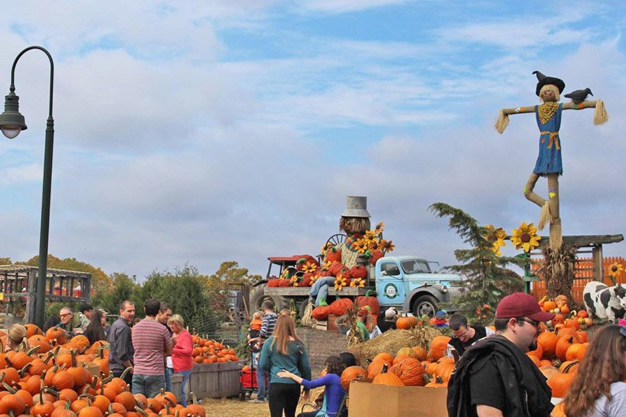 Linvilla Orchards features a full season of fall fun.