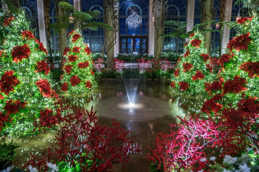 A Longwood Gardens Christmas