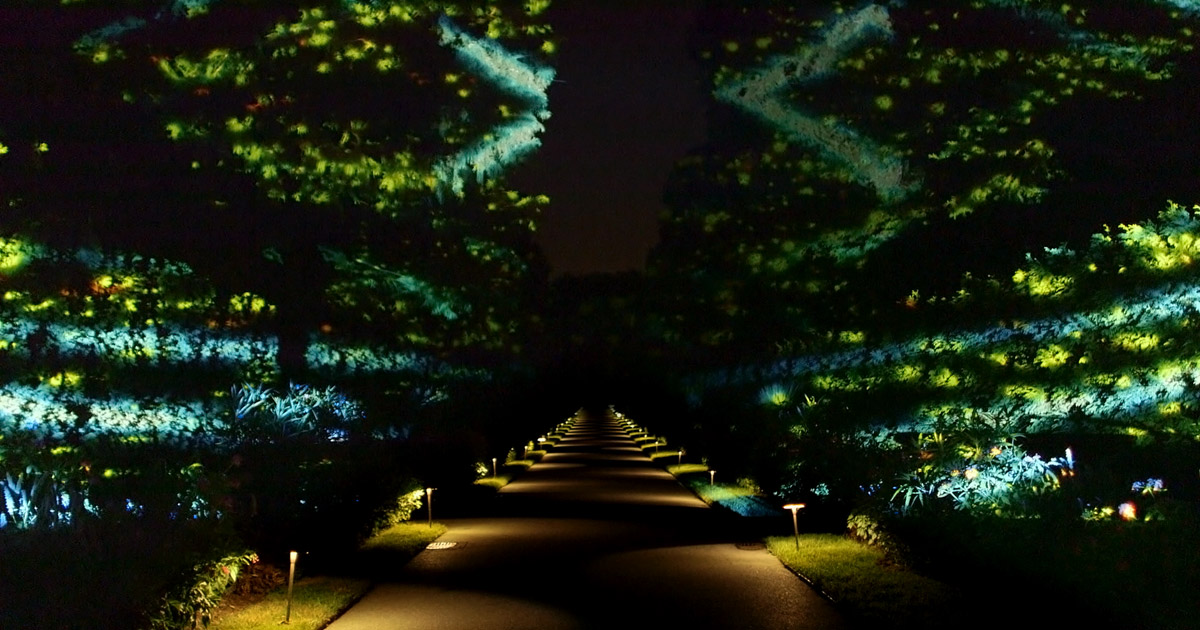 Long wood gardens 39 nightscape a light and sound experience - Places to eat near longwood gardens ...