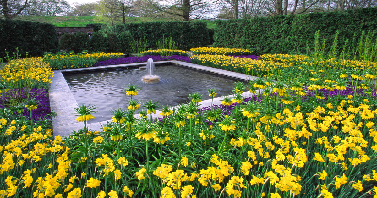 Spring blooms at longwood gardens visit philadelphia for Landscaping longwood