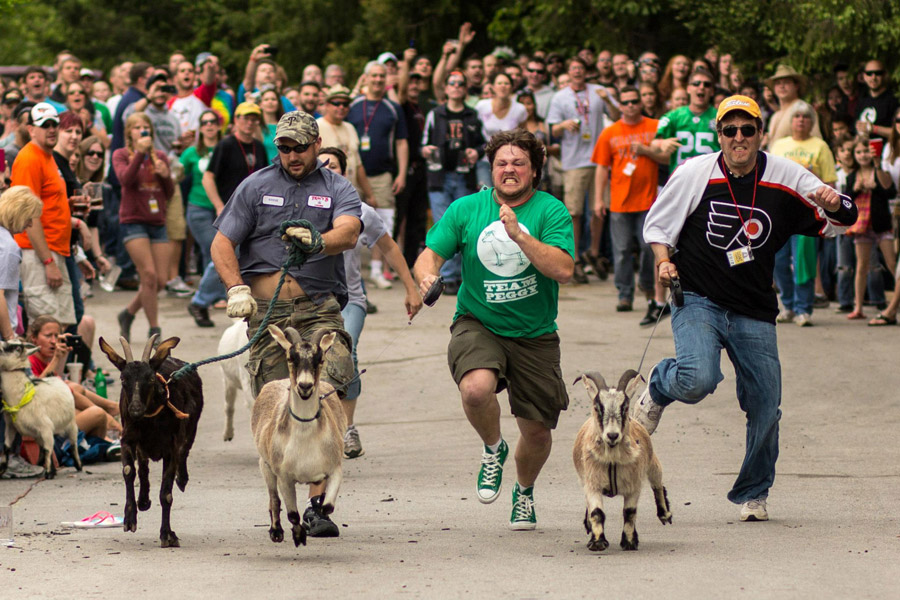 Sly Fox Bock Fest and Goat Race
