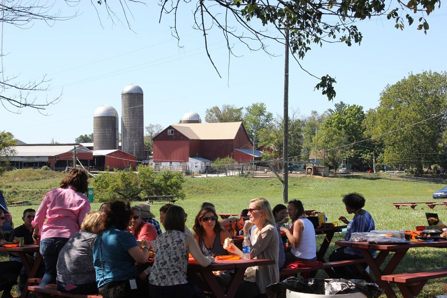Winding Brook Farms hosts its annual month-long Autumn Agritainment.