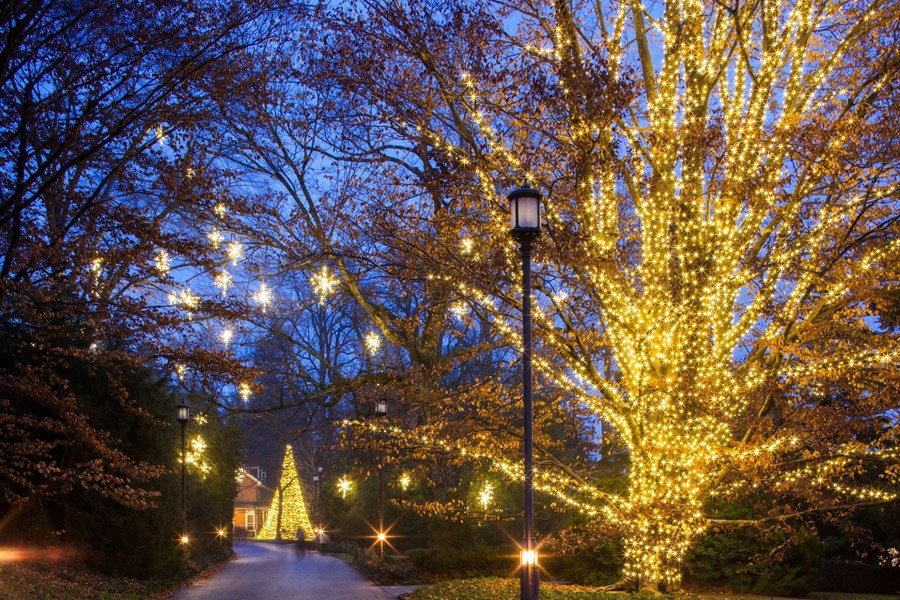 Christmas Lights at Longwood Gardens