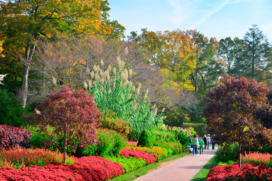 The gardens and galleries trail of greater philadelphia for Garden pictures